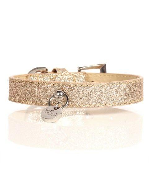 Stardust Halsband Gold 2 cm
