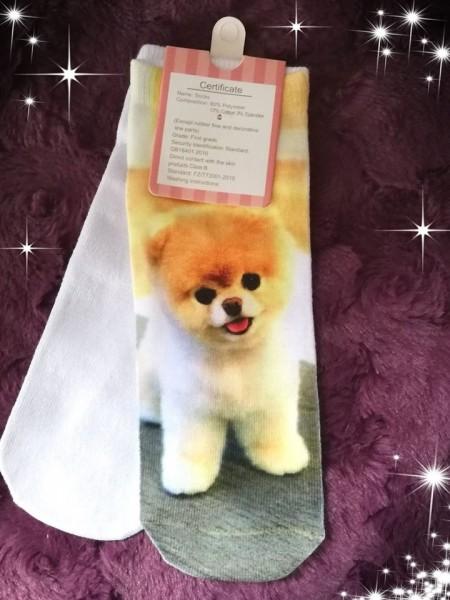 Pomeranian Söckchen