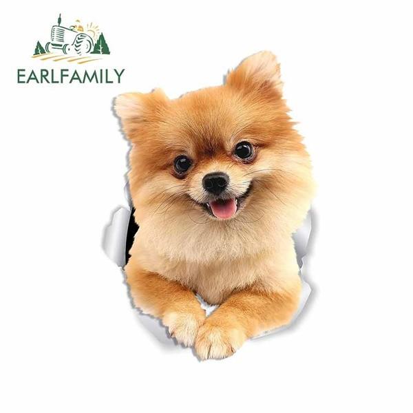 Pomeranian Aufkleber